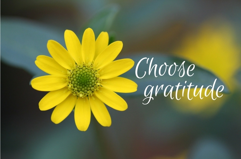 Thankful quotes and sayings